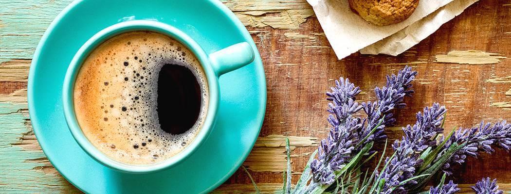 O café, a fertilidade e a gestação