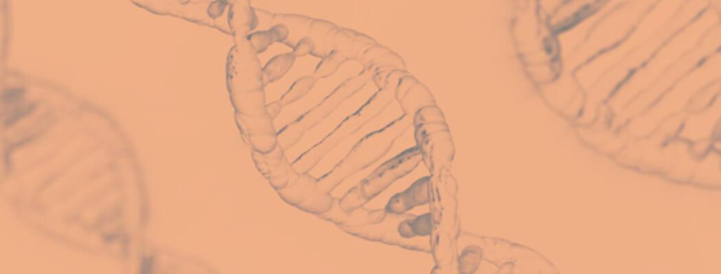 Procedimento em embriões permite o diagnóstico precoce de  doenças genéticas