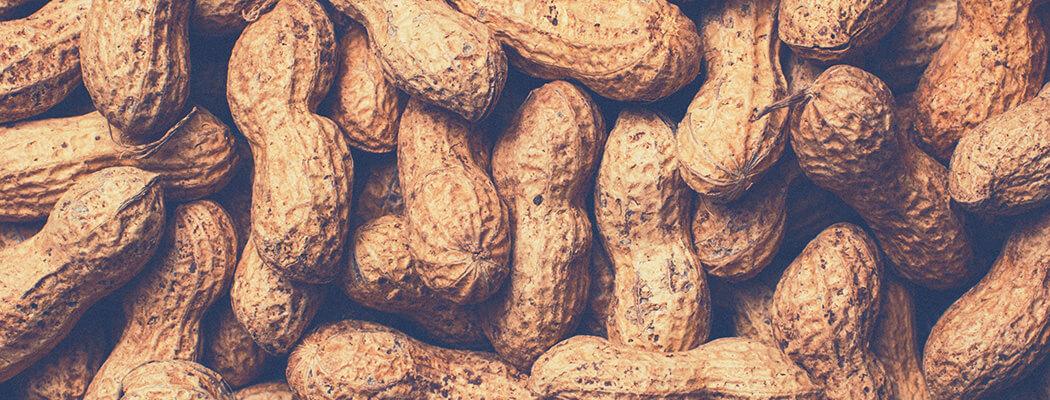 Uso de notebook e comer amendoim podem influenciar a fertilidade masculina? Saiba o que é verdade ou não sobre esse assunto